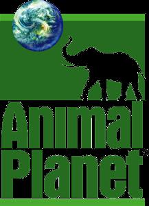 Discovery_AnimalPlanet_2008 (1)